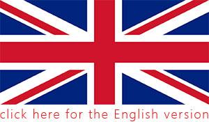 English Presentation Skills, training and coaching